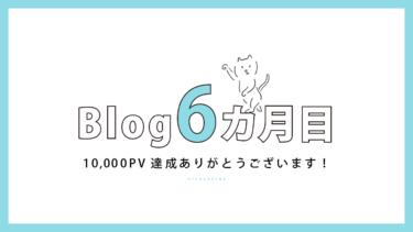 ブログ開始6カ月目【10,000PV&収益10,000円達成】