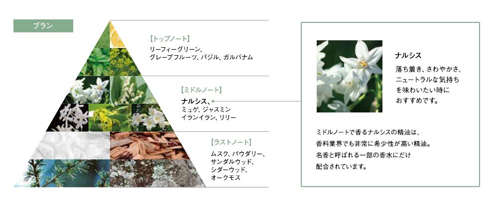 ナルシスの香りのレシピ